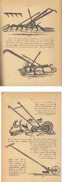 Illustrations from Amerikanisches Gartenbuch für Stadt und Land...